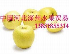 黃元帥蘋果