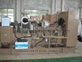 康明斯系列發電機組