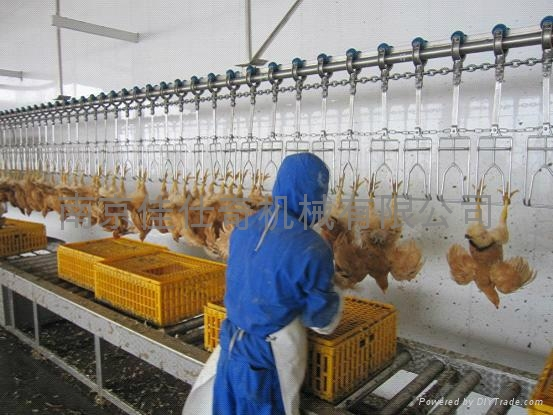 chicken slaughter line - JIASHIQI (China Manufacturer) - Animal Husbandry Equipment - Industrial Supplies Products