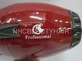 Professional Hair Dryer 9600