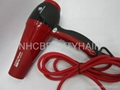 Professional Hair Dryer 6800