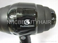 Professional Hair Dryer 8800