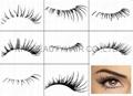 Fashion Eye Lash