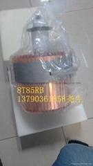 国产进口8T85RB电子管
