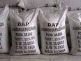 DAP (Di-Ammonium Phosphate)