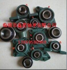Supply agricultural machinery square hole bearing 204KRR2