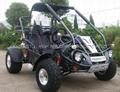 250cc Buggy (GK006GT)