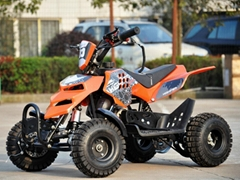 49cc Mini ATV, Mini Quad