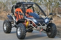 500cc EEC Buggy (GK007)