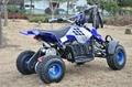 Electric Mini ATV (ATV-10E)