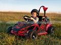 80cc Mini Cross Kart, Mini Go Kart (GK005) 2