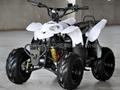 800W-1000W Electric ATV (ATV002E)