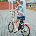 Electric Bike EL09