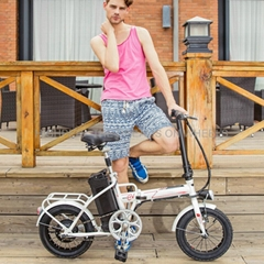Electric Folding Bike EF02(S14)