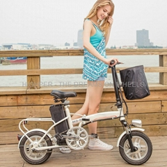 Electric Folding Bike EF03(S12)