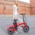 Electric Folding Bike EF03(S14)