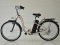 Electric Bicycle EL06S