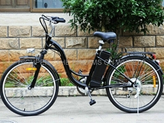 Electric Bicycle EL06S