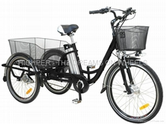 Electric Tricycle (EL08L)