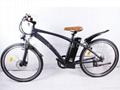 Electric Mountain Bike EM02