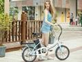 E-Bike Steel Frame