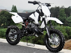 "9.0HP Dirt Bike 50cc 2 Stroke 10""/10"" (DB501A)"