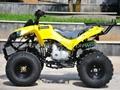 125cc ATV (ATV-008)