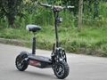 1000W~1600W Electric Scooter with Off Road Wheels (HP107E-B)