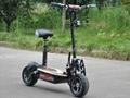 "1000W,1600W,2000W Electric Scooter 12"" On Road Wheels (HP107E-C)"