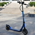 Alloy Electric Scooter 250W24V (HP109E-A)