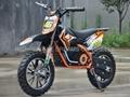 2018 new 500W~1000W Electric Dirt Bike 2