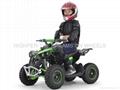 2018 Electric ATV 800~1000W (ATV-3E A)