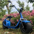 Seev Citycoco Electric Harley Scooter 1000W 60V (HP111E-A) 2