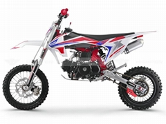 "Dirt Bike 125cc 17""/14"" (DB608)"