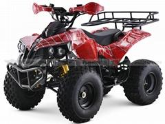 Shaft Drive Electric ATV