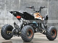 110cc ATV, 125cc ATV (ATV004)