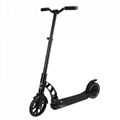 250W36V Electric Scooter (HP-I12)