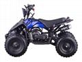 Mini Quad 49cc (ATV-6)  2