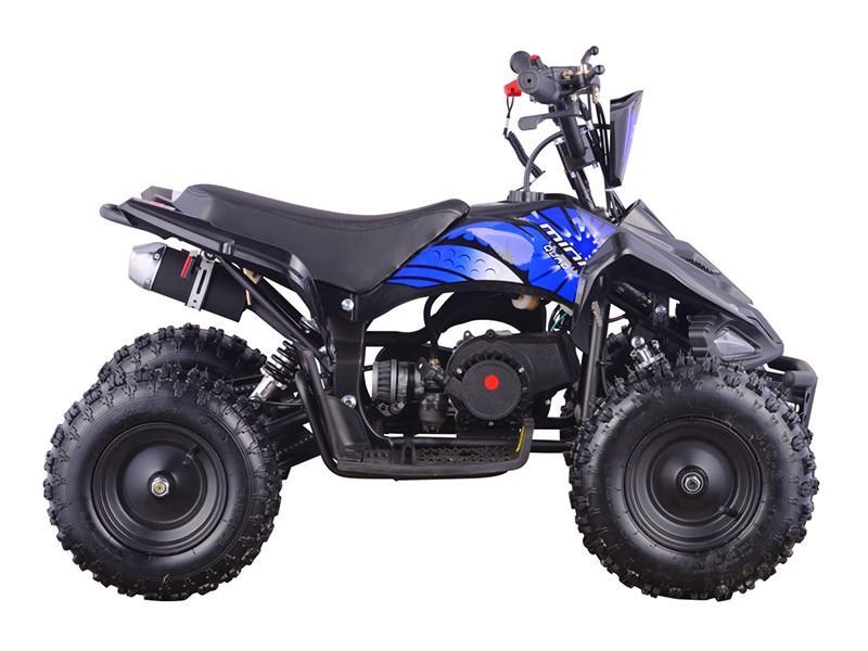 Mini Quad 49cc (ATV-6)  3
