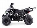 ATV 70cc, 110cc (ATV002)
