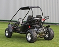 150cc Go Kart, Buggy, Go Cart (GK003GT) 3