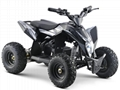 Electric Quad ATV (ATV-9E)
