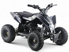 Electric Quad ATV (ATV-9