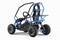 Kids Electric Go Kart Buggy