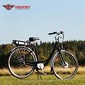 Electric Bike (HP-C01)