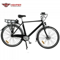 Electric Bike (HP-C02)