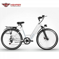 Electric Bike (HP-C07)
