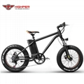 Electric Fat Bike (HP-M01)