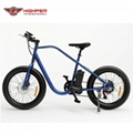 Electric Fat Bike (HP-M02)