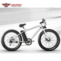 Electric SNOW Bike (HP-M03)